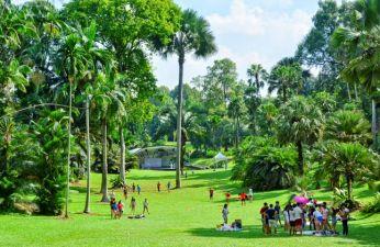 Ghé thăm vườn thực vật tại Singapore